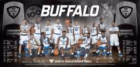 buffalo-mbb
